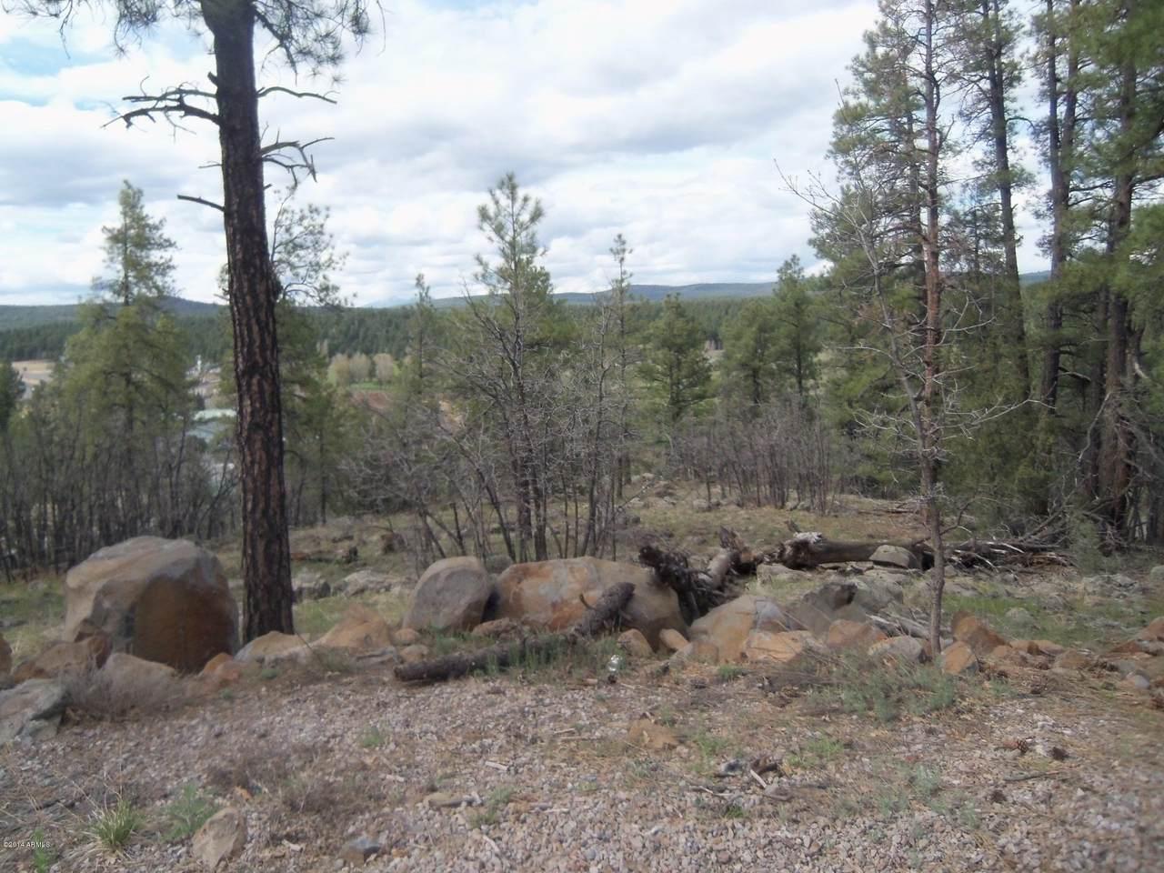115 Navajo-Lower Lot 148 Road - Photo 1