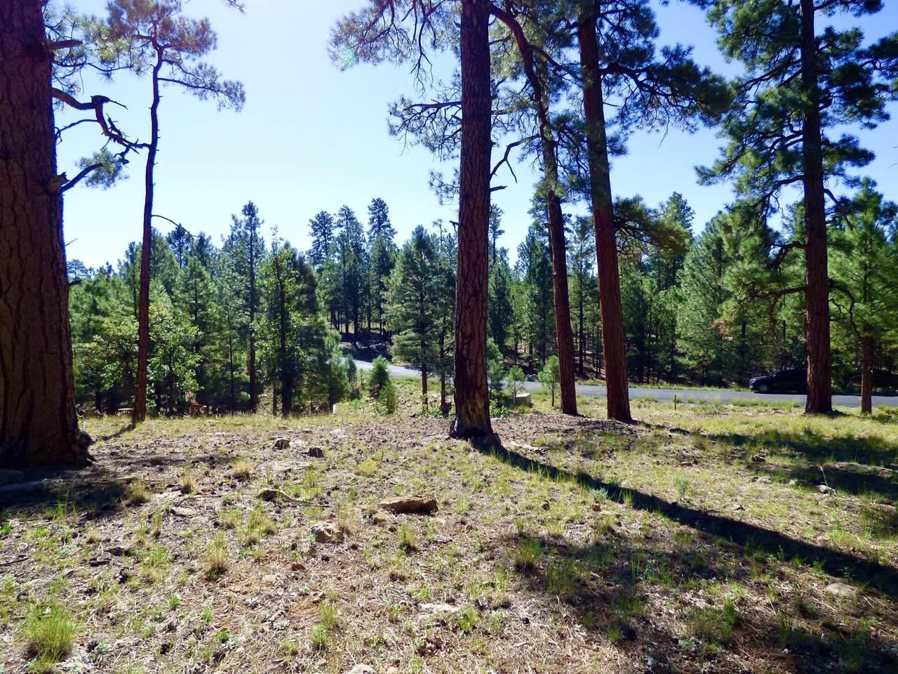 2096 Pine Canyon Drive - Photo 1