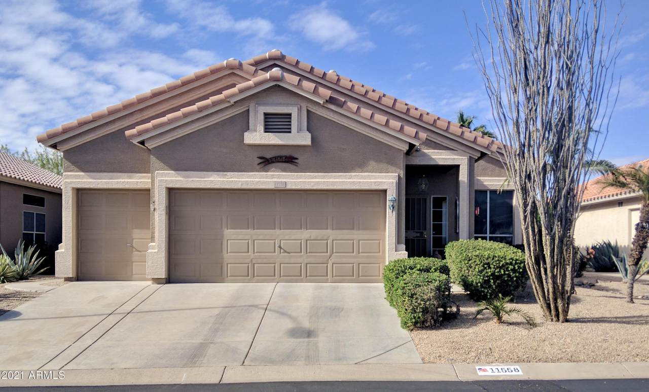 11558 Tortoise Court - Photo 1