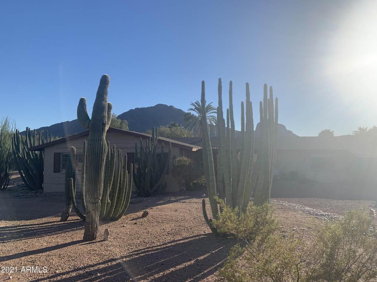5901 Cactus Wren Road - Photo 1