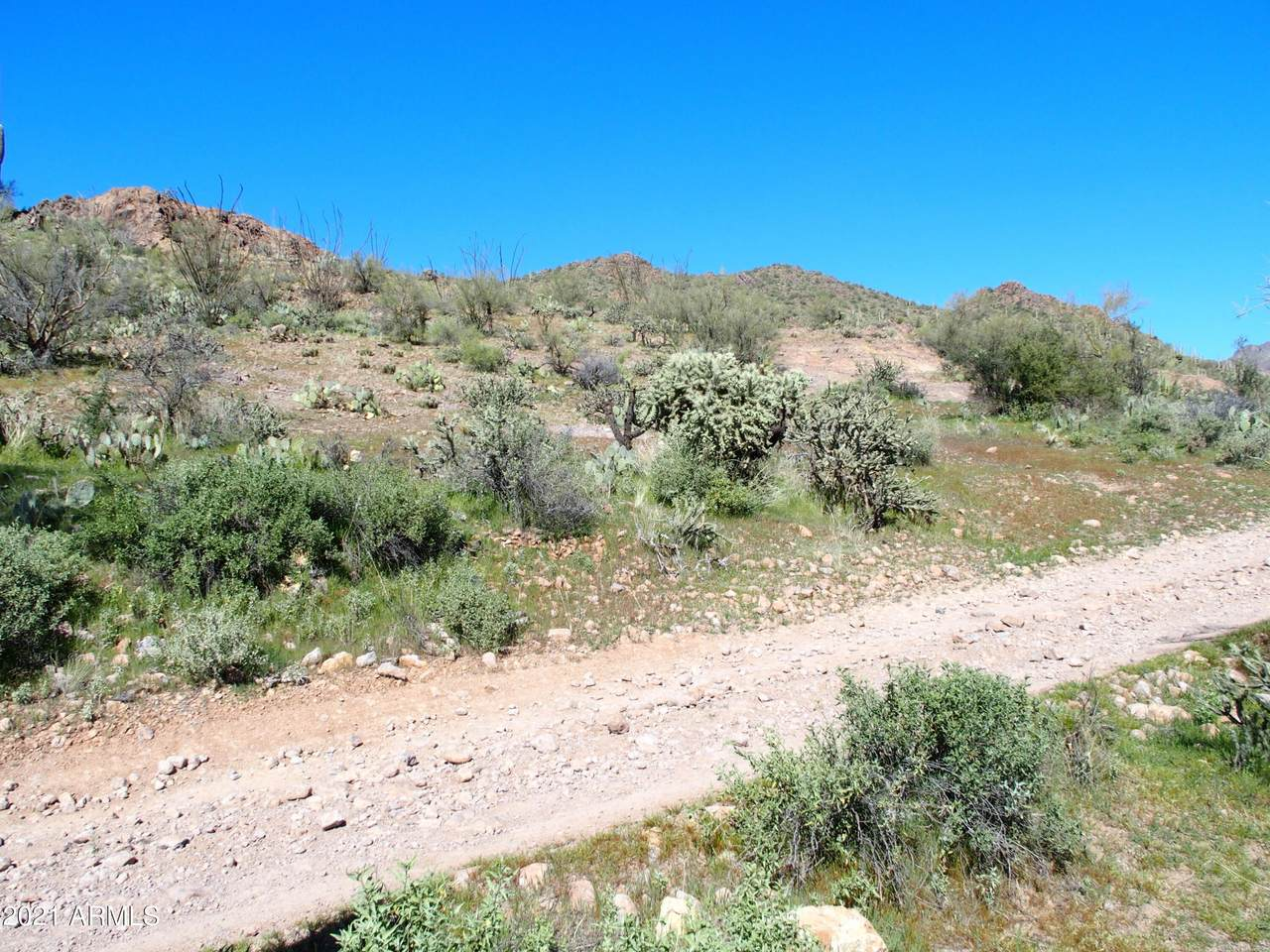 0 Silver Tip Road - Photo 1