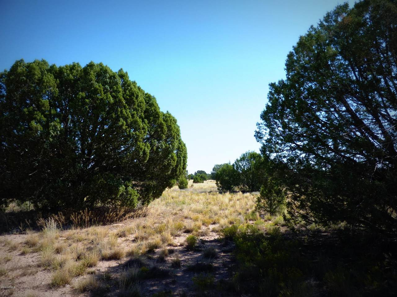 027A Upper Verde Trail - Photo 1