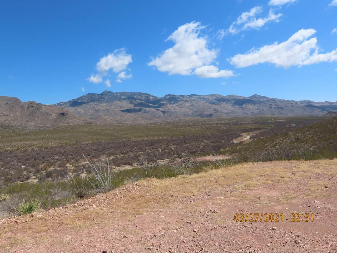 11825 Agua Verde Road - Photo 1