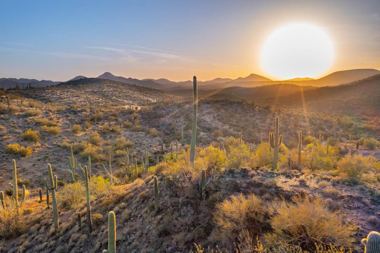 42000 Sierra Vista Drive - Photo 1