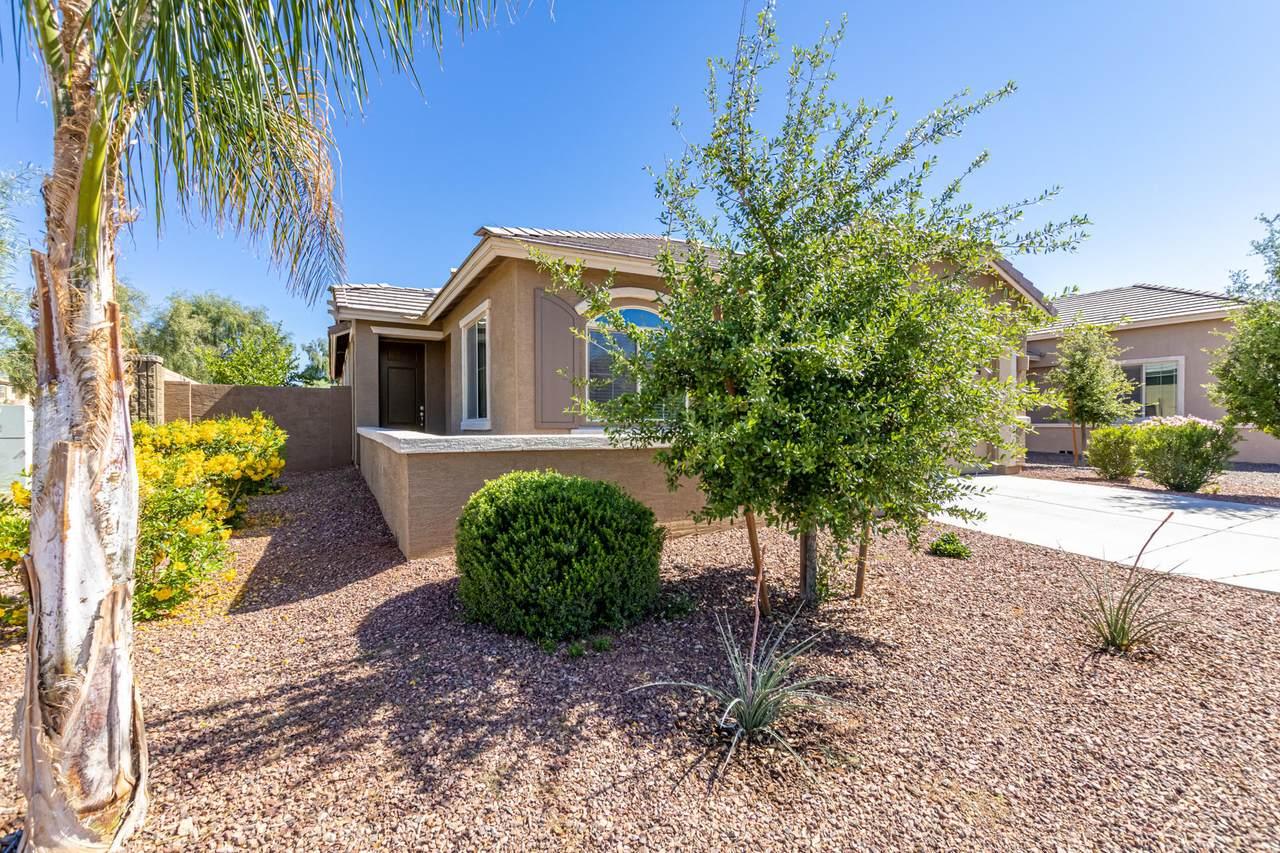 3812 Desert Broom Drive - Photo 1
