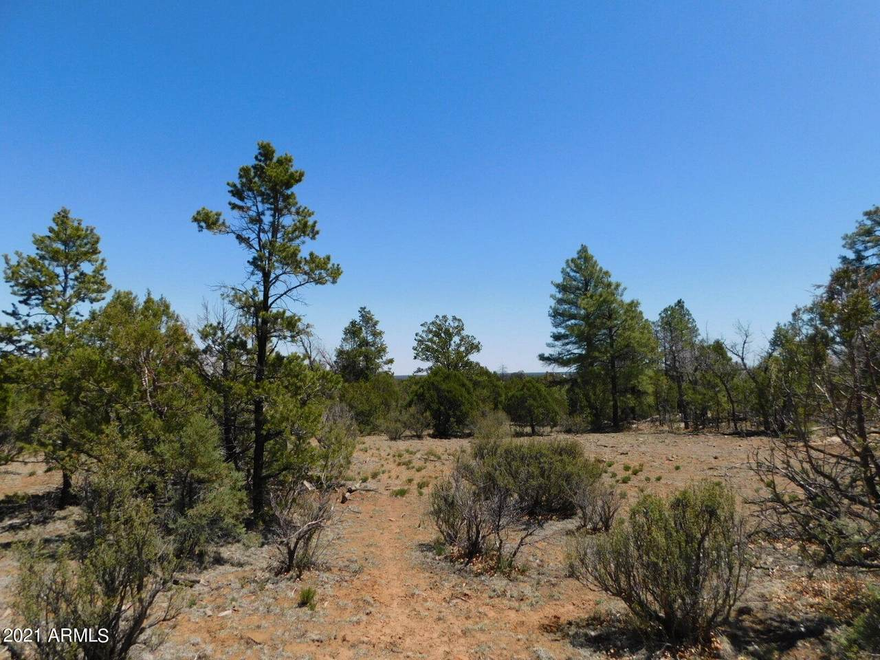 3517 Sunset Ridge Loop Loop - Photo 1
