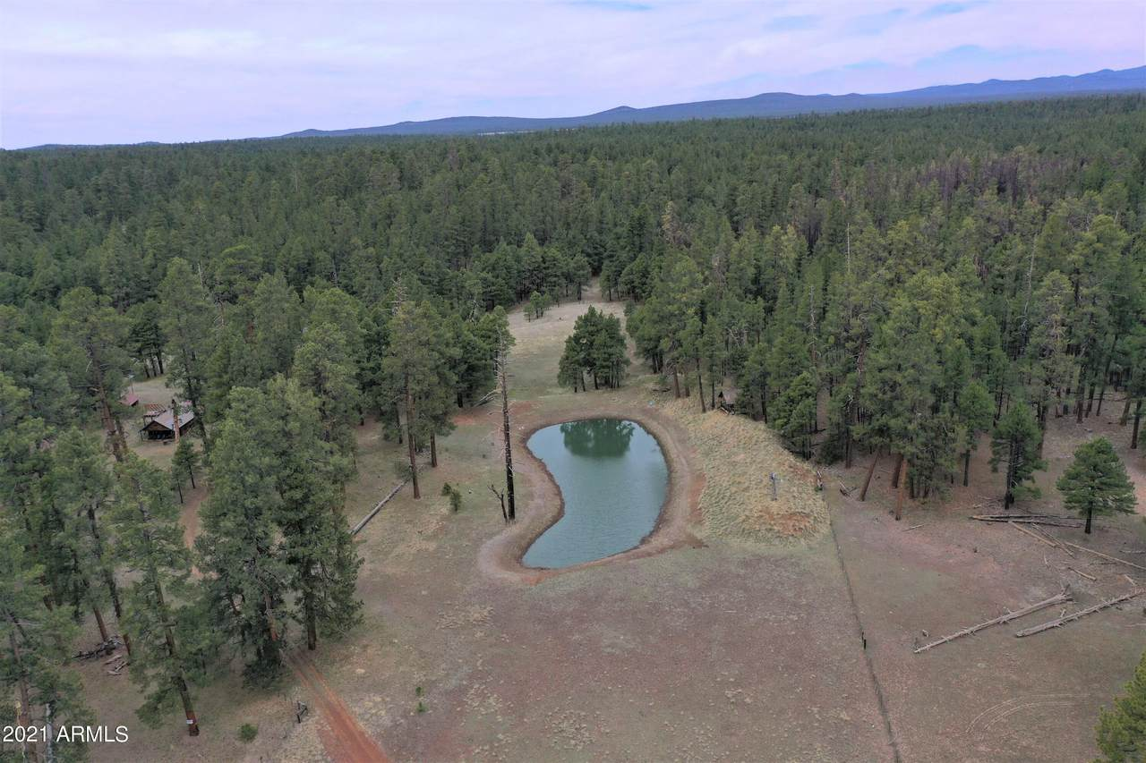 TBD Forest Road 122 - Photo 1