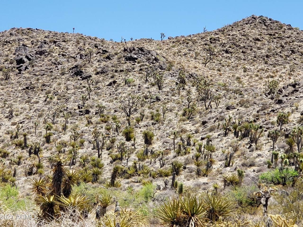 000 Mesquite Road - Photo 1