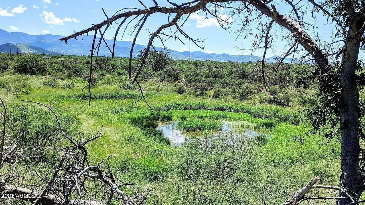 38 Acres On Hwy 181 & Turkey Cr. Road - Photo 1