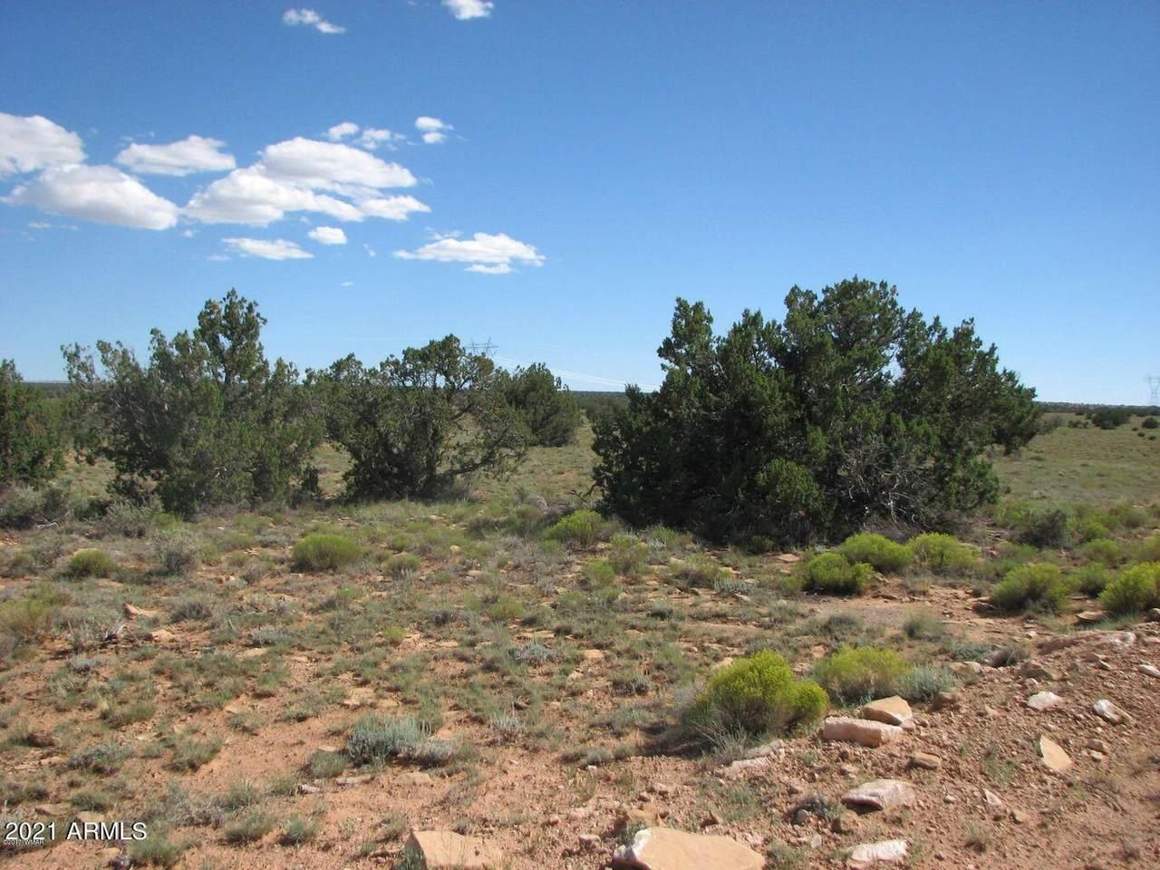 Lot 305 Chevelon Canyon Ranch - Photo 1