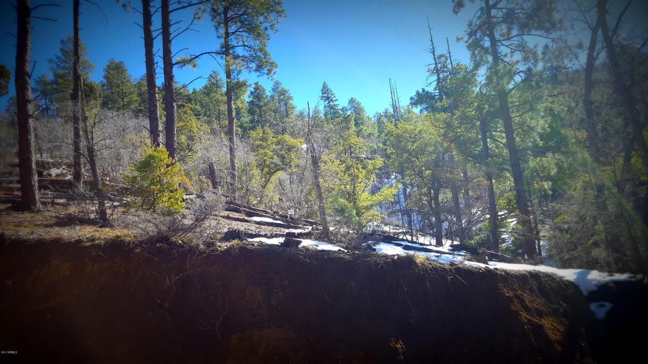 0 Breezy Pine Road - Photo 1