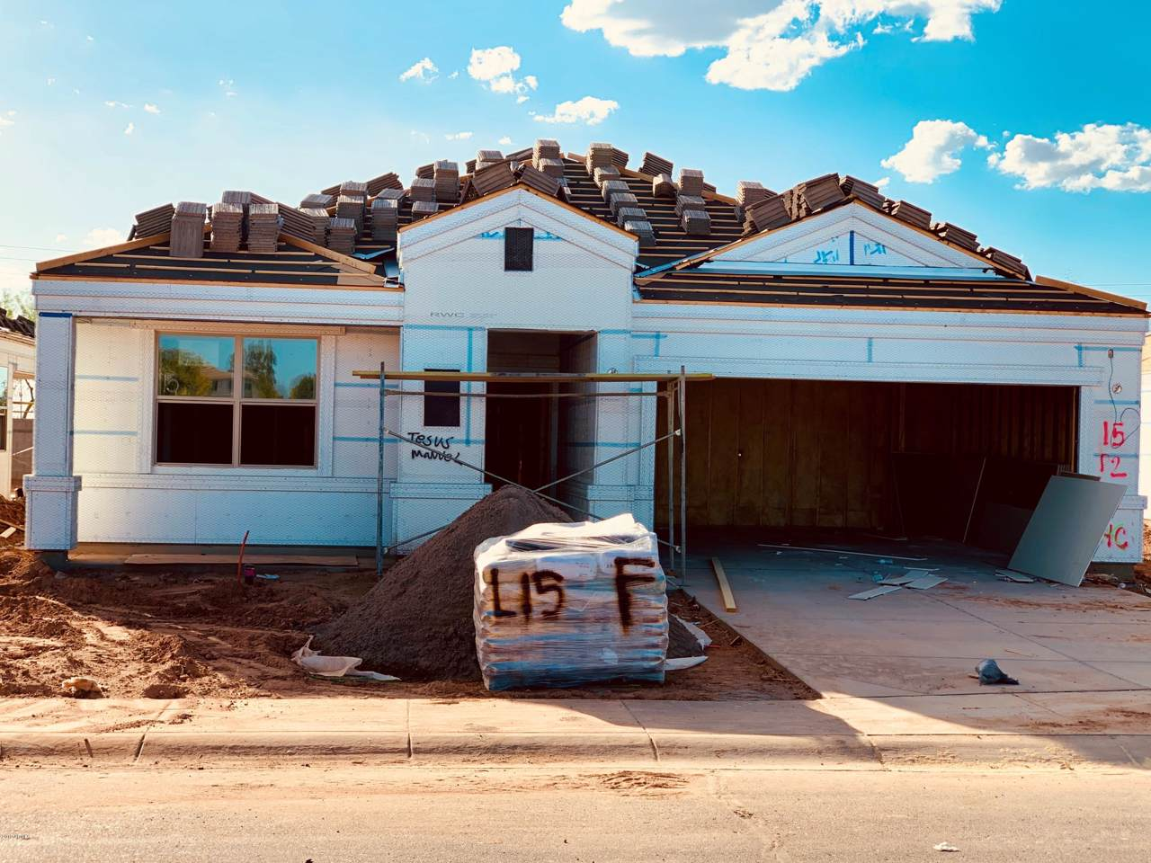 30116 Cholla Drive - Photo 1