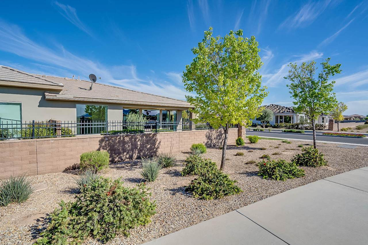 36086 Desert Tea Drive - Photo 1