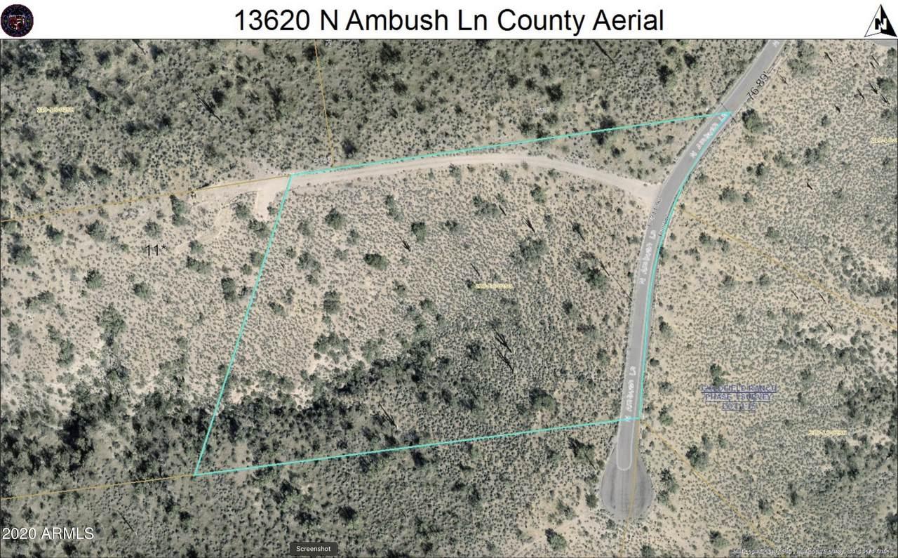 13620 Ambush Way - Photo 1