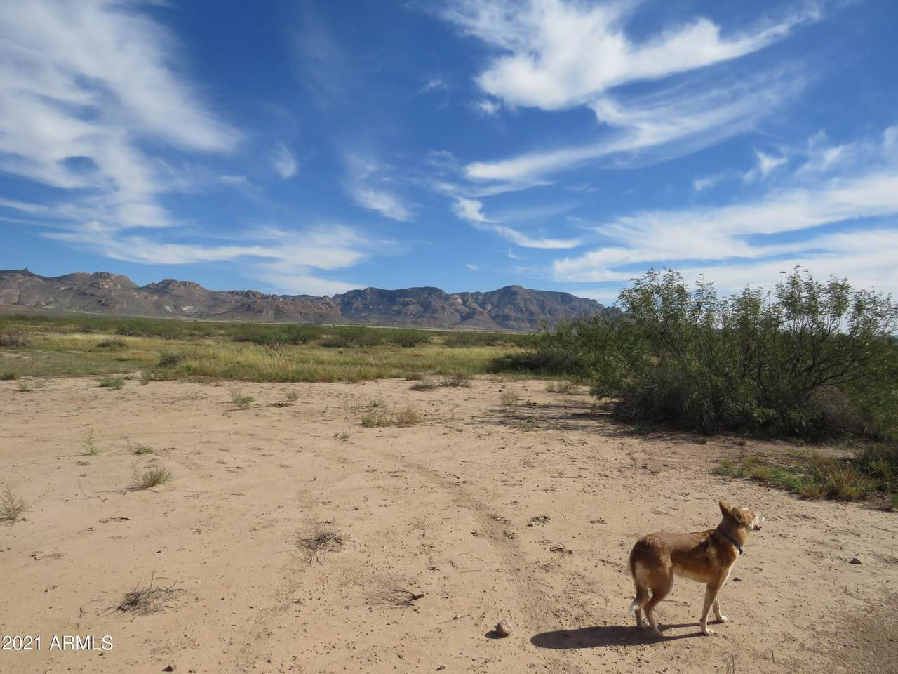 Three Triangle Ranches #38, 10 Acres - Photo 1