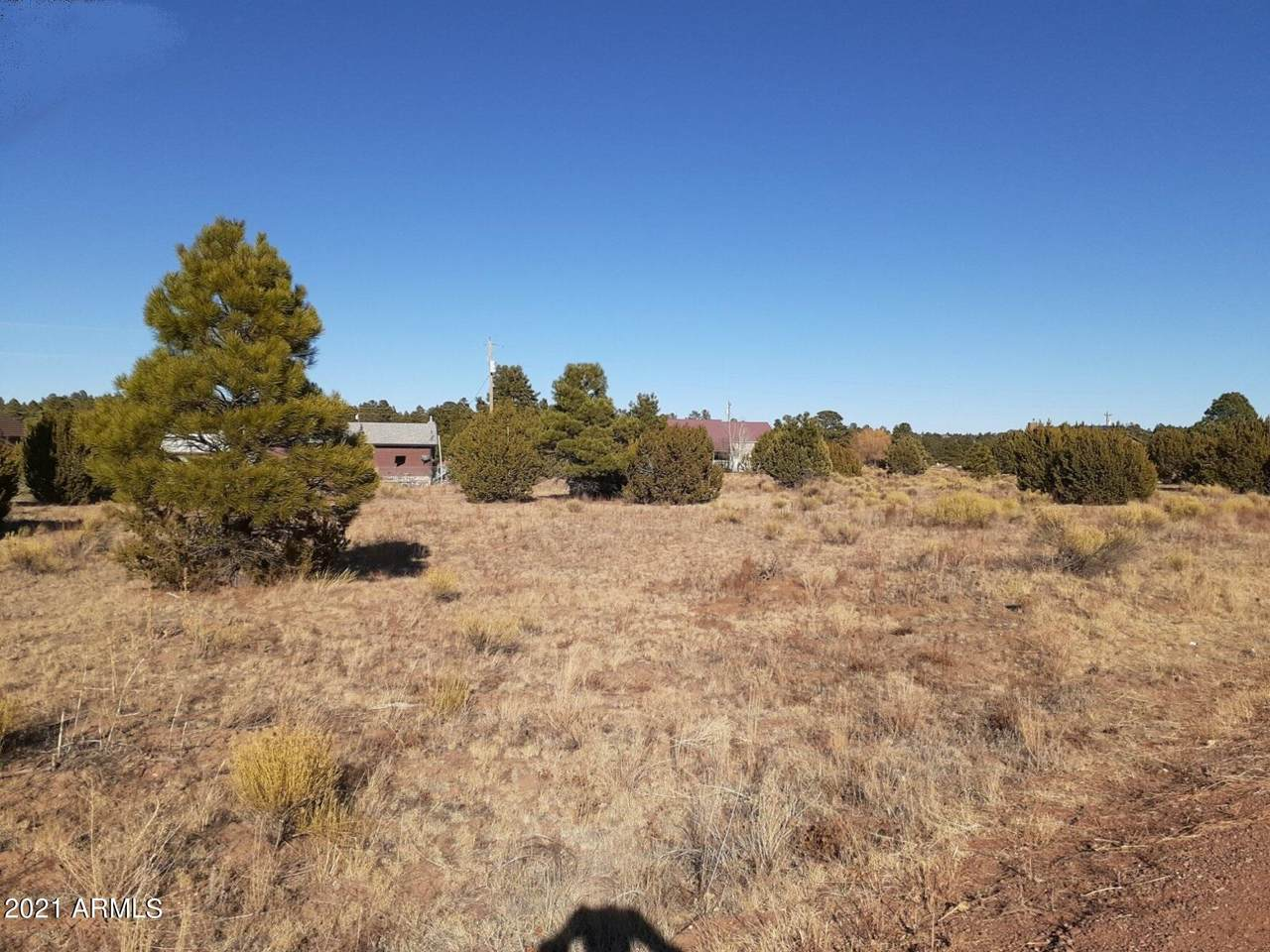 2228 Meadow Lane - Photo 1