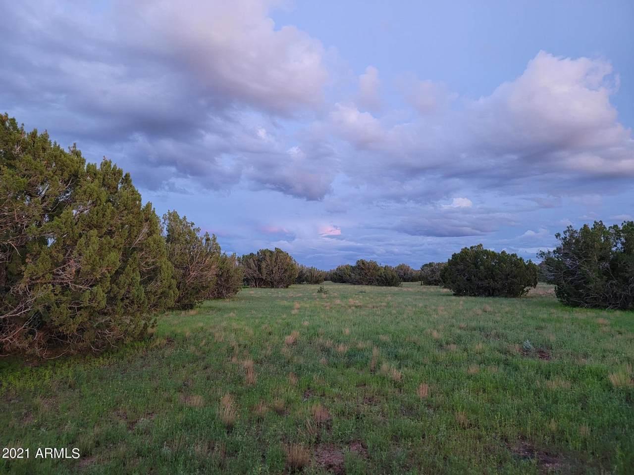 113 Elk Run - Photo 1