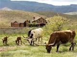 8960 Cutting Edge Ranch Trail - Photo 2
