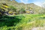 7718 Golden Reef Road - Photo 57