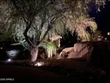 9818 Balancing Rock Road - Photo 81