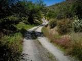 7718 Golden Reef Road - Photo 47
