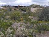 93XX Prickly Pear Trail - Photo 4