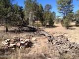 3653 Zane Grey Trail - Photo 2