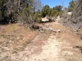 3653 Zane Grey Trail - Photo 5