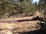 3653 Zane Grey Trail - Photo 6