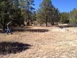 3653 Zane Grey Trail - Photo 8