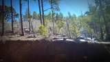 0 Breezy Pine Road - Photo 2