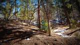 0 Breezy Pine Road - Photo 23