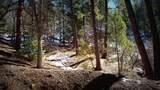 0 Breezy Pine Road - Photo 25