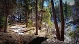 0 Breezy Pine Road - Photo 26