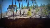 0 Breezy Pine Road - Photo 3