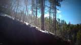 0 Breezy Pine Road - Photo 6