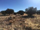 Lot 301 Peaceful Hill Road - Photo 13