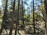 A Lonesome Hawk Drive - Photo 2
