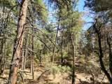 A Lonesome Hawk Drive - Photo 3