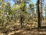 A Lonesome Hawk Drive - Photo 4
