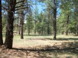 Pcl3T Coconino Forest Rd 867 - Photo 1