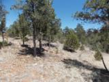 3155 Trail End Road - Photo 8