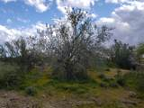 93XX Prickly Pear Trail - Photo 14
