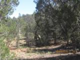 155 Acres Peach Springs - Photo 19