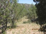 155 Acres Peach Springs - Photo 20
