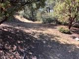 0 Monica Mine Road - Photo 4