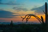 10355 Desert Vista Drive - Photo 12