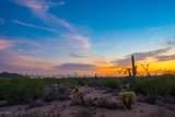 10355 Desert Vista Drive - Photo 14