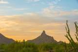 10355 Desert Vista Drive - Photo 3