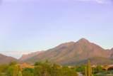 10355 Desert Vista Drive - Photo 4